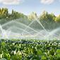 Comisión de Agricultura del Senado inicia audiencias por reforma al Código de Aguas