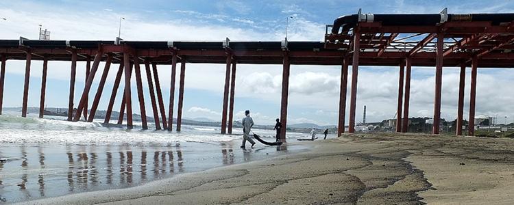 Inician proyecto para recuperar suelos degradados en Quintero y Puchuncaví
