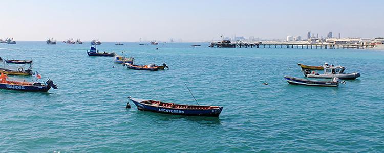 Realizan primer monitoreo ambiental integrado en bahía de Mejillones