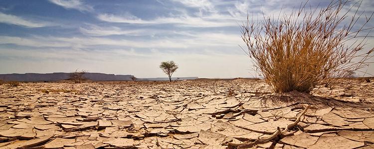 Se crea la Comisión Asesora Presidencial Permanente de Cambio Climático