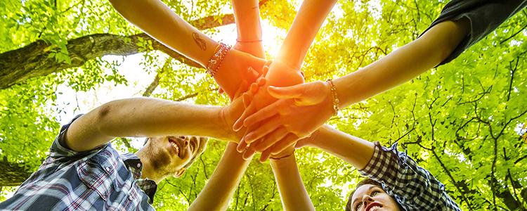 BASF abre convocatoria a proyectos de impacto social y ambiental