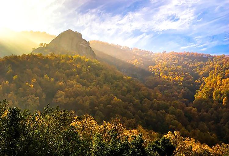 Consejo de Ministros aprueba creación de Santuario Cerro Poqui en Región de O'Higgins