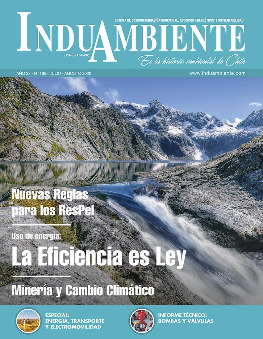 Revista N° 165
