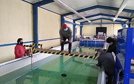 Evalúan efectividad de cortinas de microburbujas de aire en control de ruido submarino