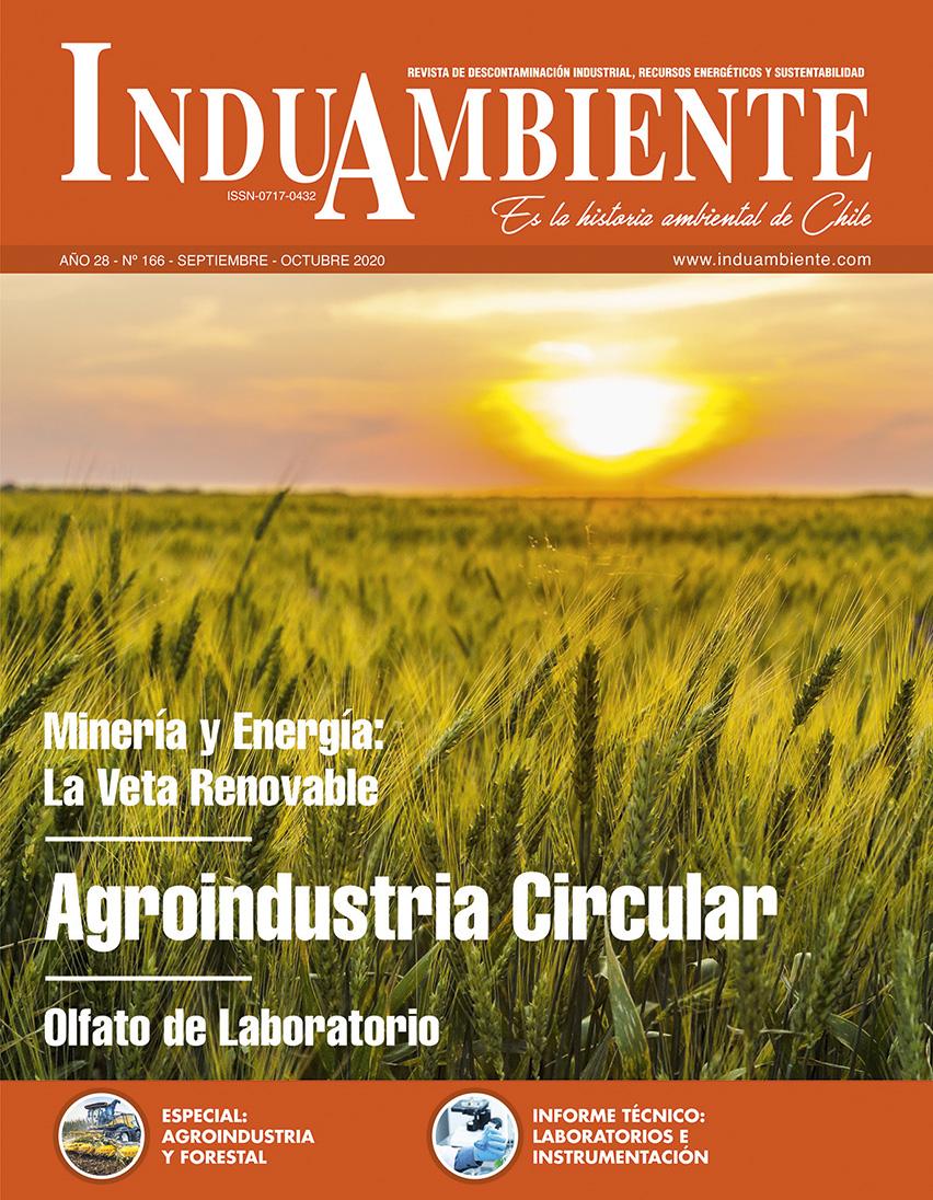 Revista N° 166