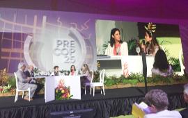 PreCOP25: 6 países plantean meta de conservar casi un 30% de áreas terrestres y marinas