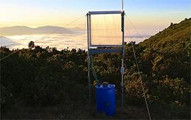 Atrapaniebla eficiente y de bajo costo dará agua a pequeñas comunidades del norte
