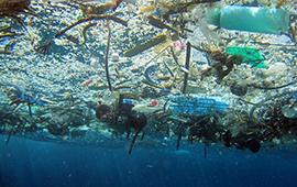 Partió consulta para Estrategia Nacional sobre Residuos Marinos y Microplásticos