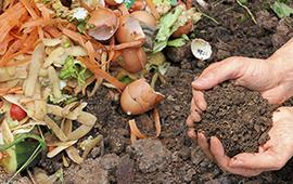 Con más de 15 iniciativas en marcha, Reciclo Orgánicos se extiende hasta 2022