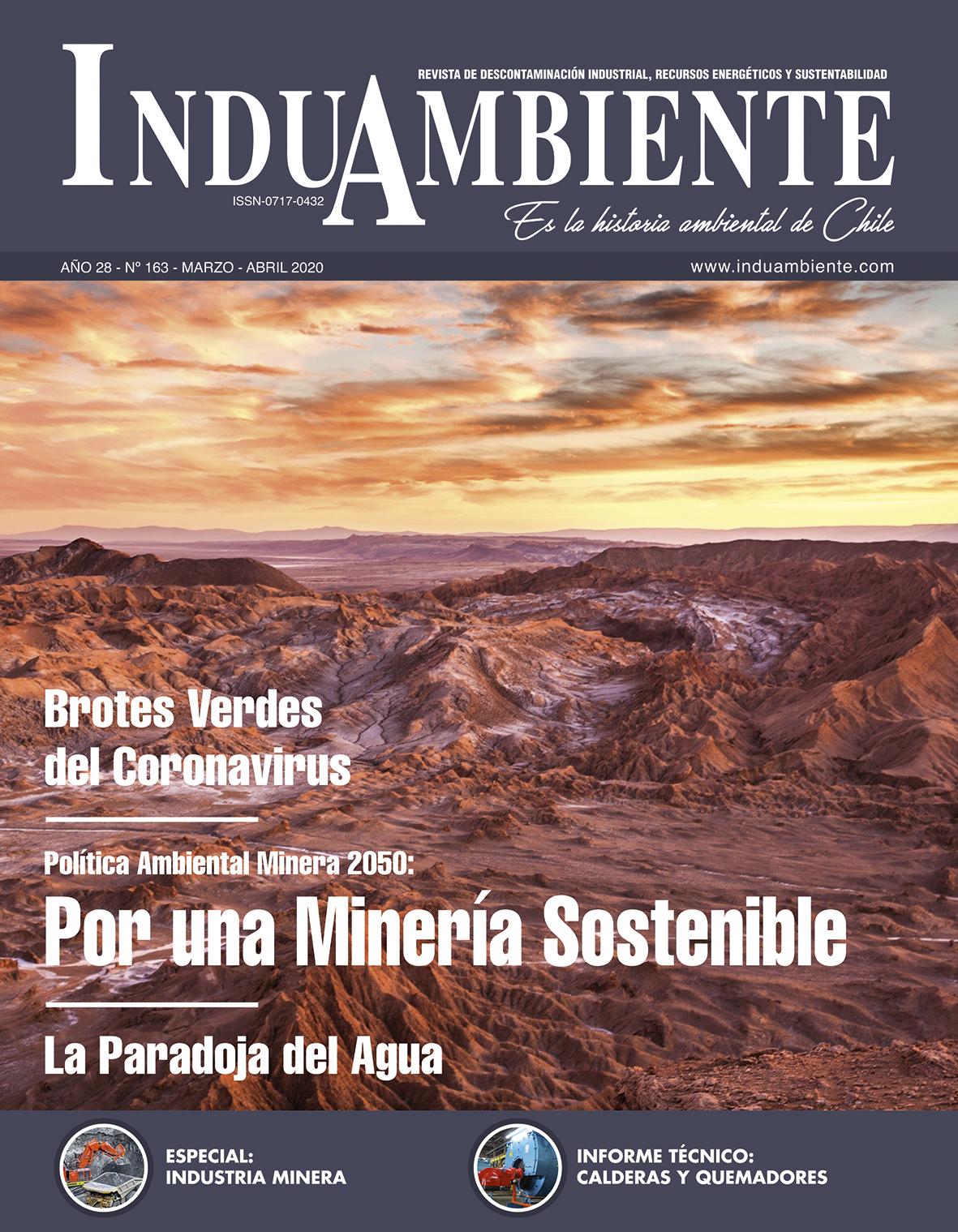 Revista N° 163