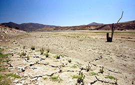 Abren inscripciones para ONGs chilenas que quieran participar en COP25