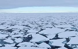 """ONU llamó a unirse contra el cambio climático o """"estaremos perdidos"""""""