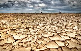 Año 2019 cierra década de calor excepcional y gran devastación climática