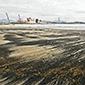 Nuevo varamiento de carbón afecta a playa Ventanas en Puchuncaví