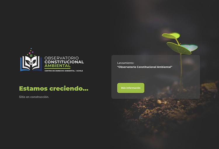 Lanzan Observatorio Constitucional Ambiental para apoyar el debate constituyente