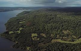 El Natri: primer Santuario de la Naturaleza en la provincia de Arauco