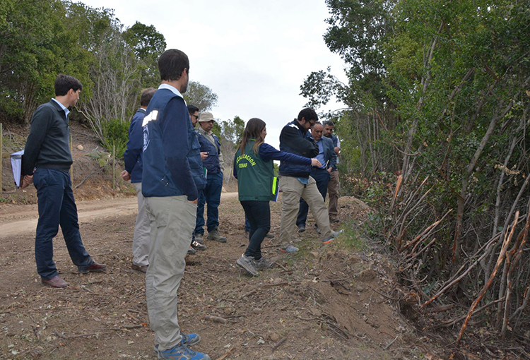 Inmobiliaria Altos del Yali deberá reparar daño ambiental en Quebrada La Loma