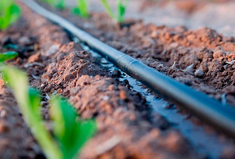 Avanza proyecto que fomenta obras de riego incorporando objetivos ambientales