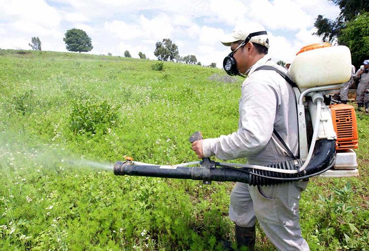 Biorrepelente chileno destaca en el mercado latinoamericano de productos orgánicos