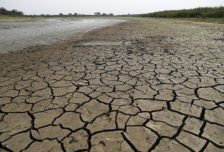 """Preparan """"infraestructura verde"""" para enfrentar la megasequía"""