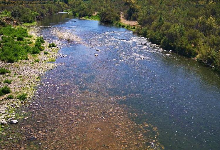 Caudales de ríos de zona centro-norte han caído hasta 37% en últimos 30 años