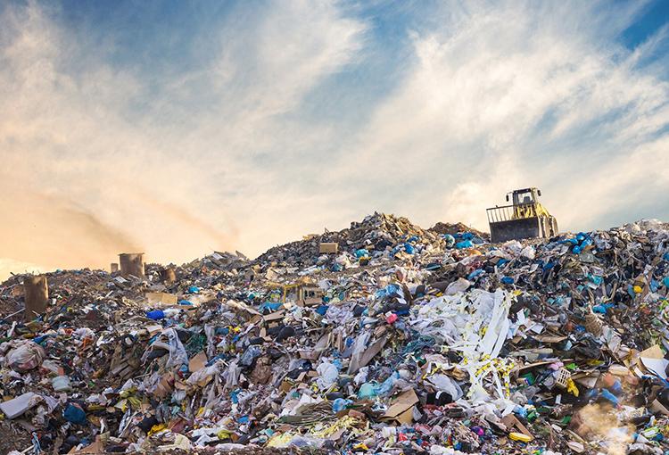 Presentan propuestas sobre principios medioambientales para el debate constitucional