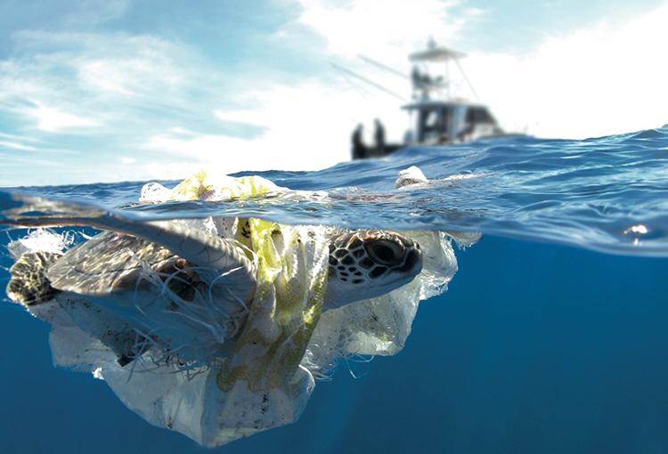 Residuos plásticos en el mar podrían triplicarse en los próximos 20 años, dice estudio
