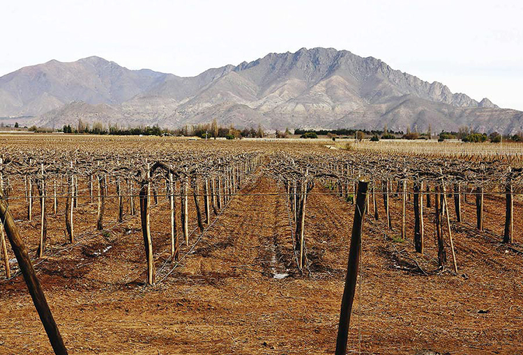 Presidente Piñera declara zona de catástrofe por sequía a la región de Valparaíso