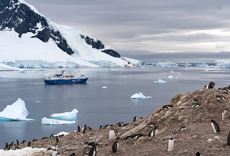 Diputados aprueban acuerdo para potenciar protección ambiental de la Antártica