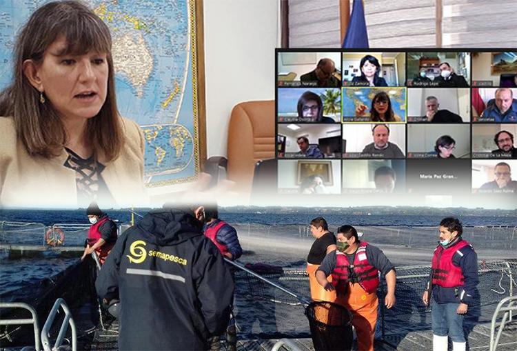 Crean red de fiscalización para velar por la sustentabilidad pesquera y acuícola